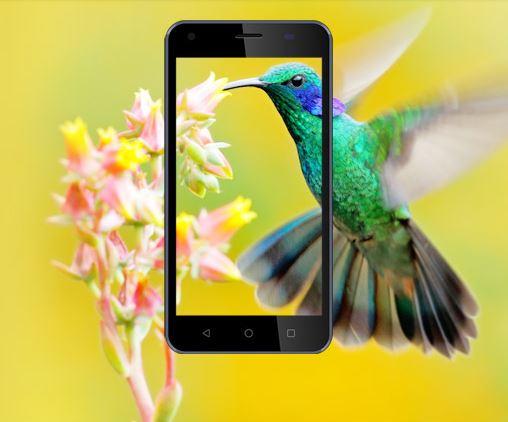 4G VoLTE Phone Lowest Price